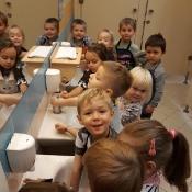 Marchewka – projekt edukacyjny Motylków_19