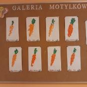 Marchewka – projekt edukacyjny Motylków_40