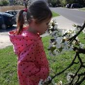 Motylki szukają wiosny_1