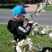 Motylki szukają wiosny_2