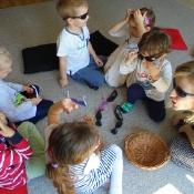 Motylki w Szkole Językowej Helen Doron _11