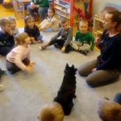 Psi terapeuci, czyli dogoterapia w przedszkolu