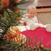 Rybki szykują świąteczny stół_9