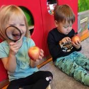 Rybkowy tydzien z jabłkiem