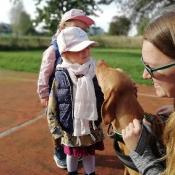 Vega - czworonożny przyjaciel Julii z wizytą u przedszkolaków_10