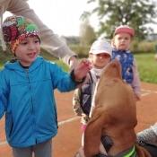 Vega - czworonożny przyjaciel Julii z wizytą u przedszkolaków_11