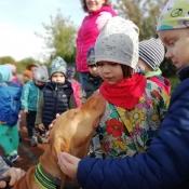 Vega - czworonożny przyjaciel Julii z wizytą u przedszkolaków_1