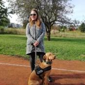 Vega - czworonożny przyjaciel Julii z wizytą u przedszkolaków_20
