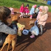 Vega - czworonożny przyjaciel Julii z wizytą u przedszkolaków_25