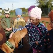 Vega - czworonożny przyjaciel Julii z wizytą u przedszkolaków_3