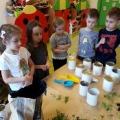 Zabawki ekologiczne – projekt edukacyjny u Biedronek