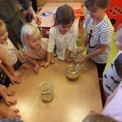 Zabawy Biedronek z piaskiem i gliną_11