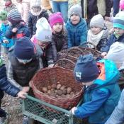 Dzień Pieczonego Ziemniaka:)