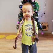 Ferie z wężem