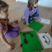 Lisków zabawy z kasztanami