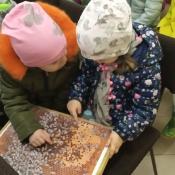 Misie poznają tajemnice pszczelarstwa_20