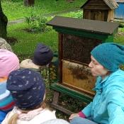 Misie poznają tajemnice pszczelarstwa_32