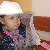 Misie poznają tajemnice pszczelarstwa_5