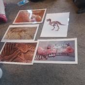 Skrzaty na tropie dinozaurów_23