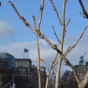 Z wizytą w Berlinie _12