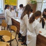 Zajęcia laboratoryjne w klasie 1LB